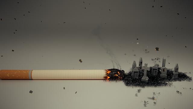 papieros smoga